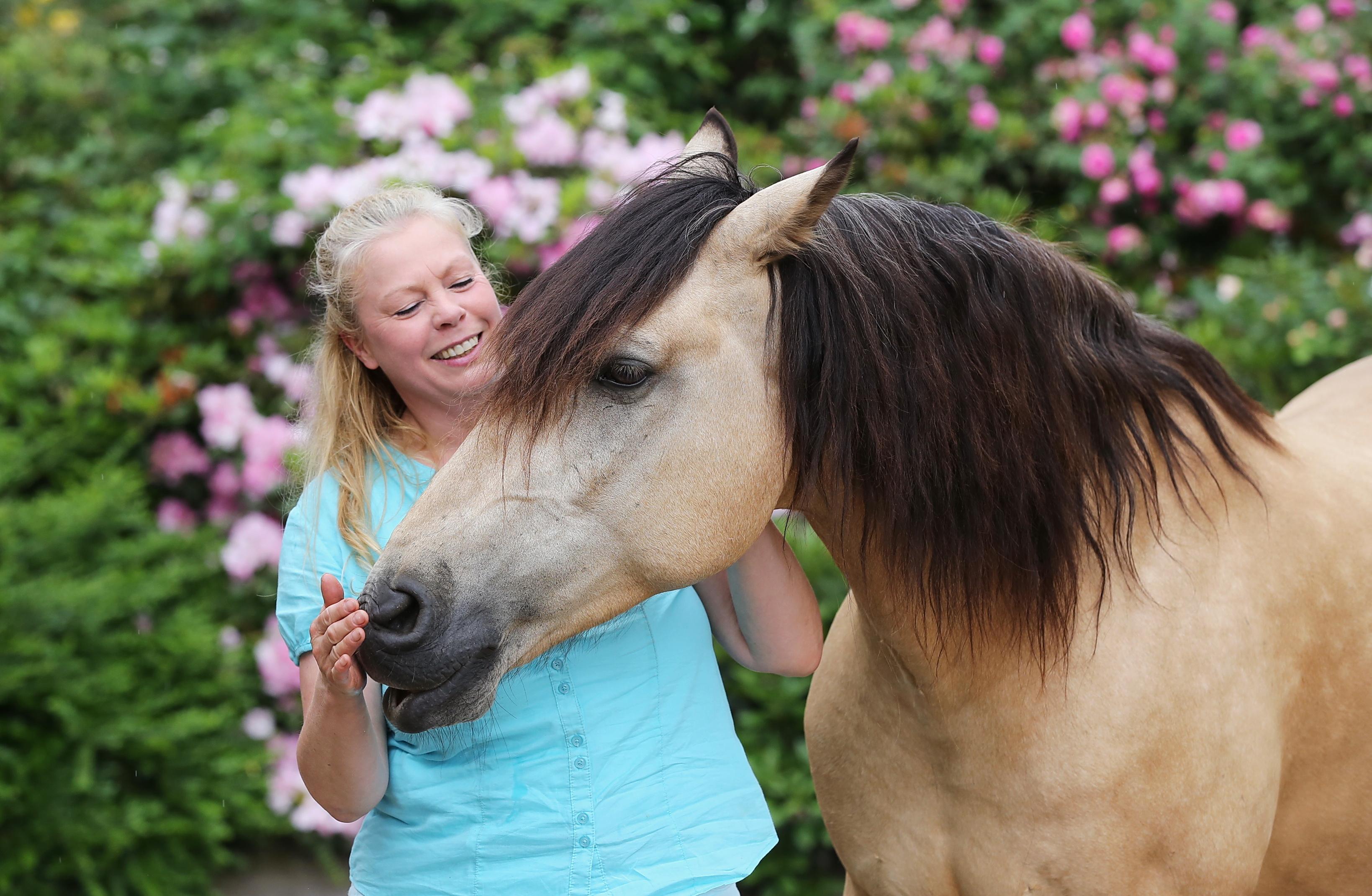Anette Kroll Pferdegestütztes Coaching